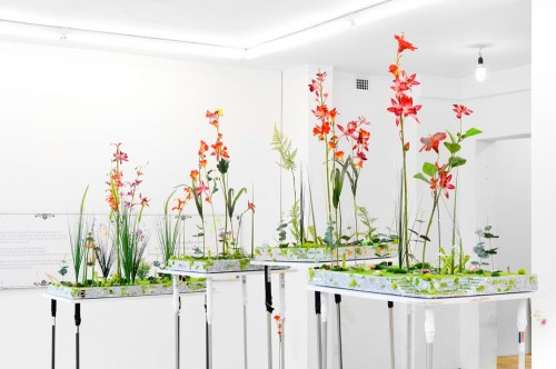 flowersofparanoia3