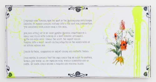 flowersofparanoia4